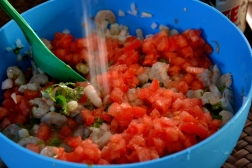 Ceviche preparation - spicing up